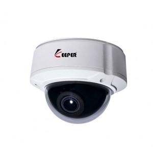 Camera IP Dome Keeper BJV-100W