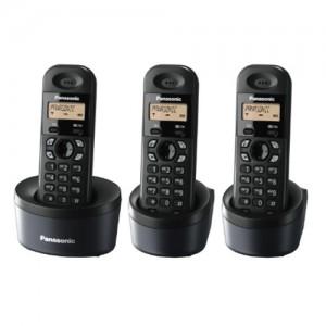Điện thoại không dây Panasonic KX-TG 1313