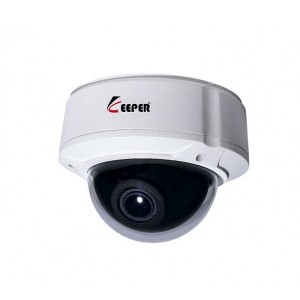 Camera IP Dome Keeper BJV-100W